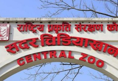 Central Zoo going digital