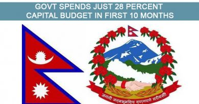 Govt spends just 28 percent capital budget in first 10 months
