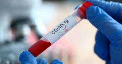 259 new cases of coronavirus