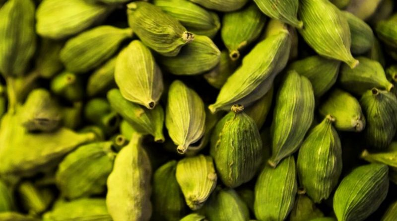 Cardamom processing in Nepal to begin from November